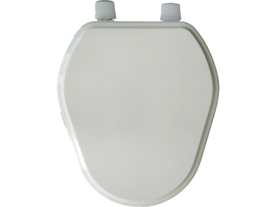 Lacquered Toilet Seat